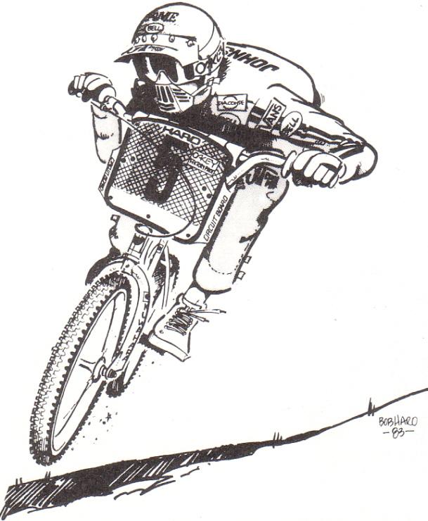 Bob Haro BMX Cartoons